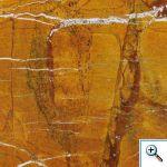zheltyj-mramor-bidasar-golden-forest-gold_M
